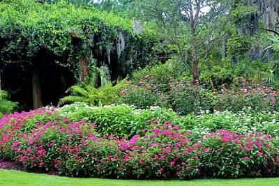 Photograph - Pergola Garden by Cynthia Guinn