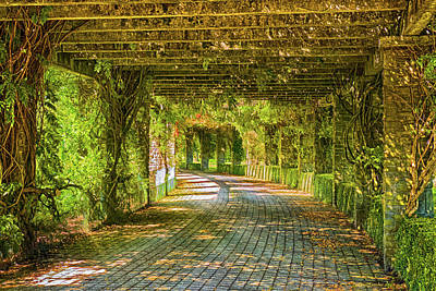 Photograph - Pergola by Wim Lanclus