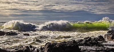 Photograph - Perpetua Waves by Wes and Dotty Weber