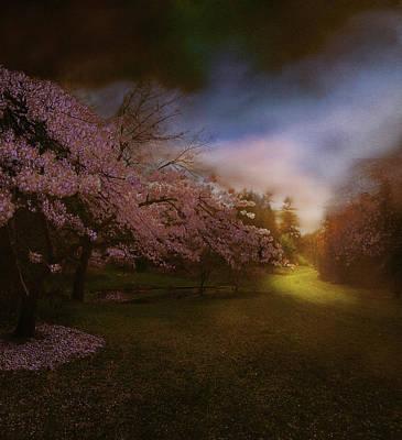Realism Photograph - Perplexing Illumination by Jeff Burgess