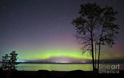 Photograph - Perseid Meteor And Aurora by Charline Xia