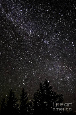 Perseid Meteor And Milky Way Art Print by Thomas R Fletcher