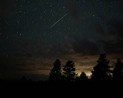 Photograph - Perseid Meteor by Bill Gabbert