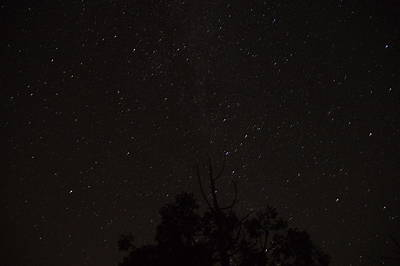 Photograph - Perseid Meteor Glow E by Phyllis Spoor