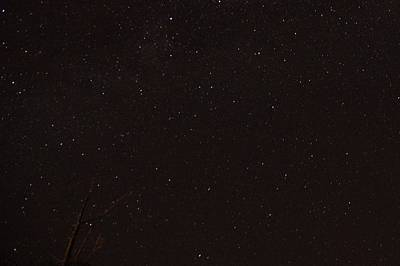 Photograph - Perseid Meteor Shower 3 2015 Southern Ca by Phyllis Spoor