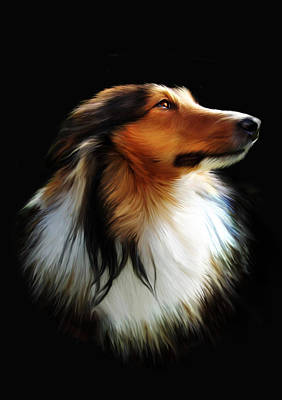 Pet Portrait Digital Art - Persephone by Julie L Hoddinott