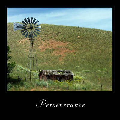 Photograph - Perserverance 2 by Mary Jo Allen