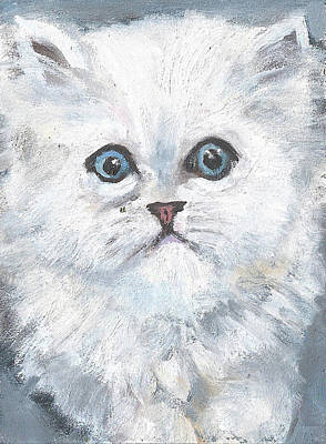 Painting - Persian Kitty by Jessmyne Stephenson