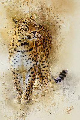 Persian Leopard Original by Tom Schmidt