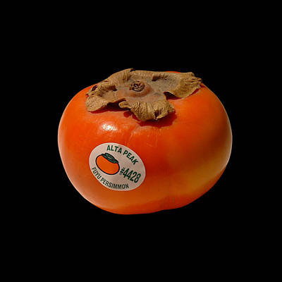 Photograph - Persimmon Semiology by Stan  Magnan