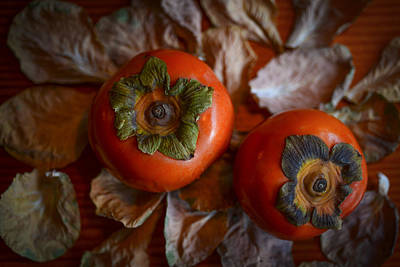 Photograph - Persimmons 5 by Ronda Broatch