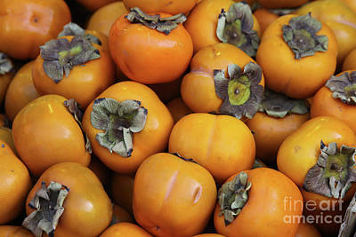 Photograph - Persimmons by PJ Boylan