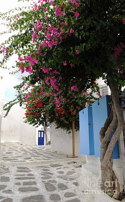 Photograph - Perspective Blue Door by Haleh Mahbod