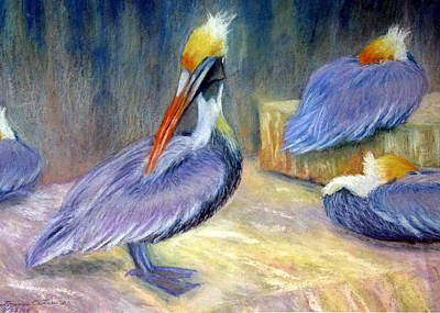 Peruvian Pelicans One  Pastel Art Print by Antonia Citrino