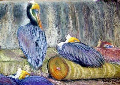 Art Print featuring the pastel Peruvian Pelicans Three Pastel by Antonia Citrino