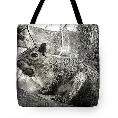 Digital Art - Pesky Squirrel Tote-bag by Fine Art By Andrew David