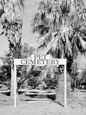 Photograph - Pet Cemetery by Dominic Piperata