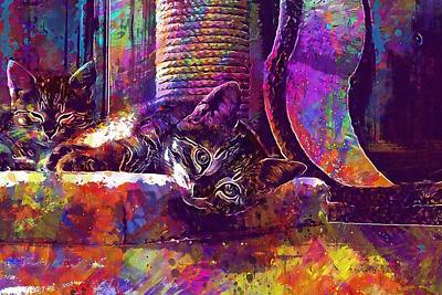 Digital Art - Pet Kitten Young Cat  by PixBreak Art