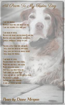 Photograph - Pet Poem 83 by David Norman