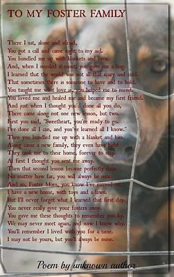 Photograph - Pet Poem 86 by David Norman