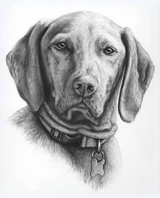 Painting -  Pet Portraits For Your Gorgeous Pets by Pet Portrait