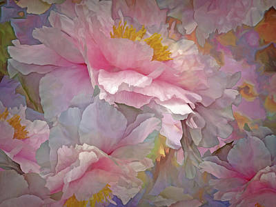 Mixed Media - Petal Dimension 20 by Lynda Lehmann