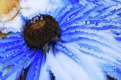 Digital Art - Petales En Ciel - 02a by Variance Collections