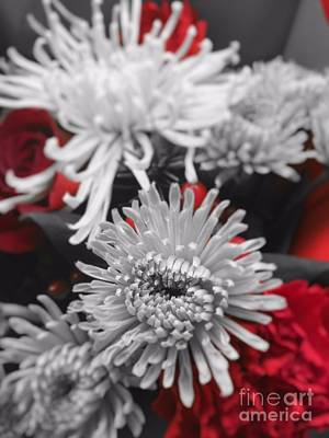 Photograph - Petals And Such by Jenny Revitz Soper