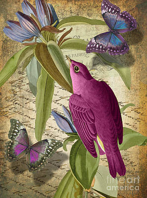 Petals And Wings I Print by Mindy Sommers