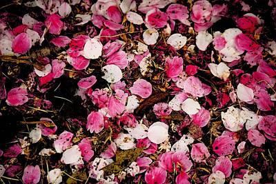 Petals Art Print by Hsin Tseng