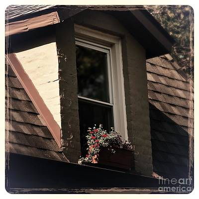 Photograph - Petals In The View - Color by Frank J Casella