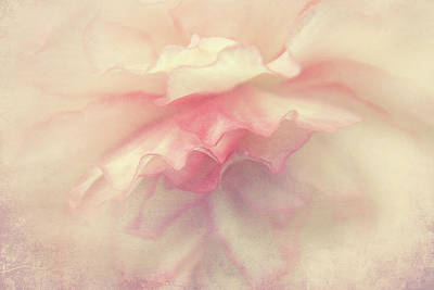 Photograph - Petals by Lali Kacharava