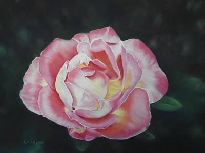 Pastel - Petals Of Love by Carol Corliss