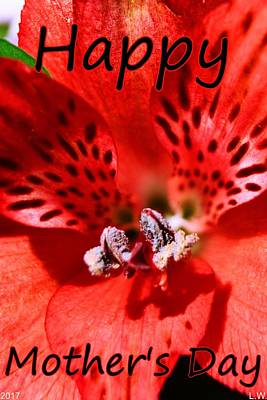 Photograph - Petals Of Red Happy Mother's Day by Lisa Wooten