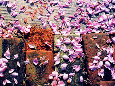 Art Print featuring the photograph Petals On The Bricks 2 Ae by Lyle Crump