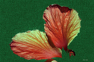 Photograph - Petals by Yuri Lev