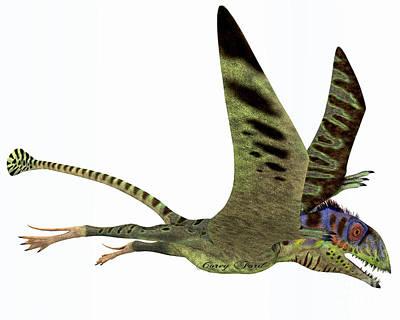 Triassic Painting - Peteinosaurus Dinosaur by Corey Ford