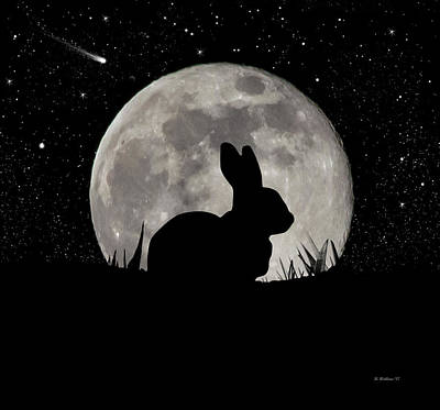 Digital Art - Peter Cottontail by Brian Wallace