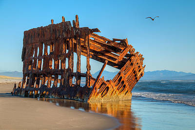 Coastal Landscape Photograph - Peter Iredale II by Kristina Rinell