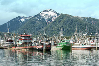 Photograph - Petersburg Alaska Harbor by Loriannah Hespe