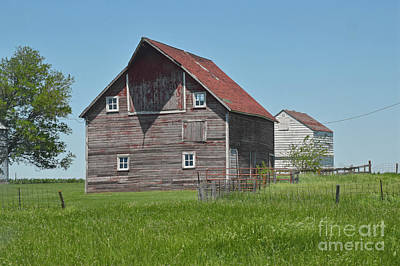 Photograph - Petersen Barn by Kathy M Krause