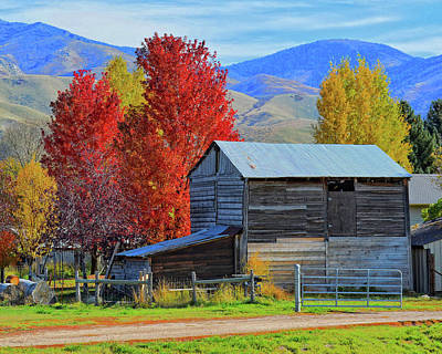 Photograph - Peterson Barn In Autumn by David King