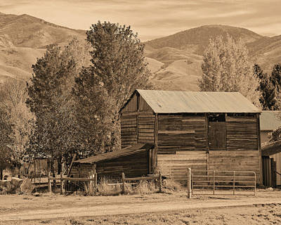 Path In Life Photograph - Peterson Barn In Autumn Sepia by David King
