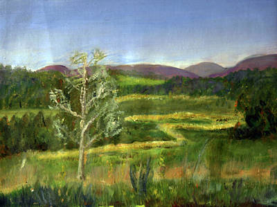 Painting - Pete's Riparian Forrest Buffer by Donna Walsh