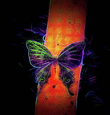 Digital Art - Petit Bois Butterfly by Aliceann Carlton