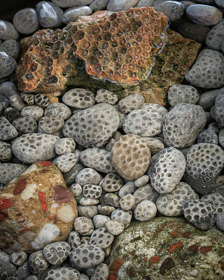 Photograph - Petoskey And Pudding Stones by William Christiansen