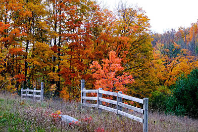 Photograph - Petoskey Autumn Fence by John McArthur