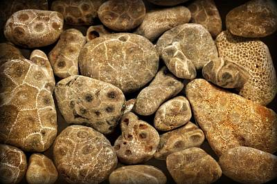Photograph - Petoskey Stones Vlll by Michelle Calkins