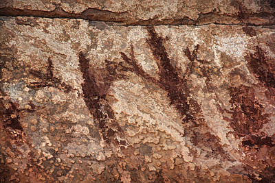 Photograph - Honanki Pictographs3 Pnt by Theo O'Connor
