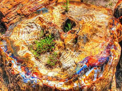 Petrified Abstraction No 2 Art Print
